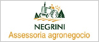 Negrini Classificado Agrícola