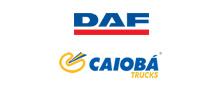 caiobá trucks - daf logo