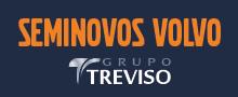 treviso viking center logo